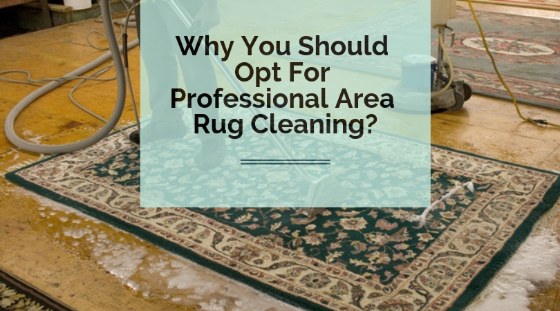 Why You Should Opt For Professional Area Rug Cleaning San Go