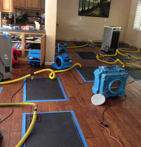 Carpet Cleaning San Diego Ca Call 858 240 4616