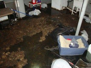 About the process of Sewage Damage Restoration